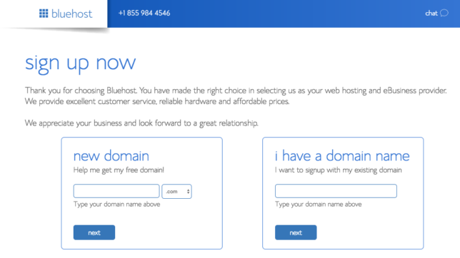 bluehost basic web hosting review
